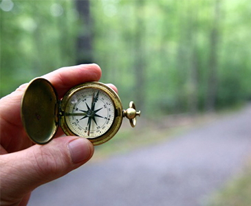 Individual Psychotherapy for Adults - image of compass showing the direction to take on a wooded path